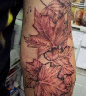 Sweet maple leaves tattoo