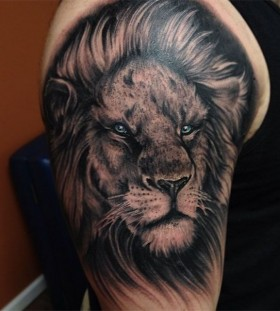 Blue eyes black lion tattoo