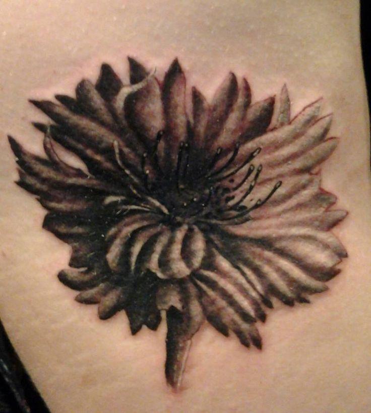 Brown adorable cornflower tattoo