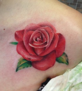 Droplets and water pink rose tattoo