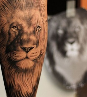 Gorgeous looking lion tattoo