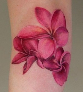 Gorgeous pink Plumeria tattoo