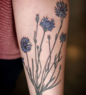 Lovely small cornflower tattoo
