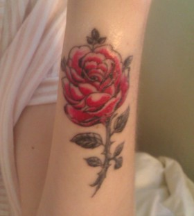 Small red and pink rose tattoo