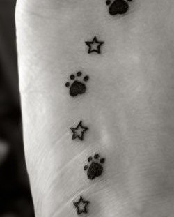 Small stars and dog tattoo