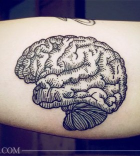 Stunning brain's tattoo by Lisa Orth