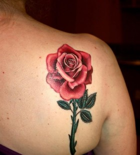 Women's shoulder lovely pink rose tattoo