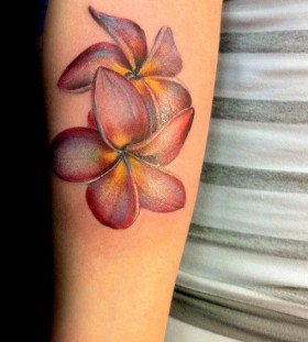 Yellow and red Plumeria tattoo