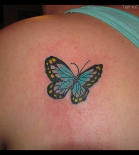 Small butterfly blue back tattoo
