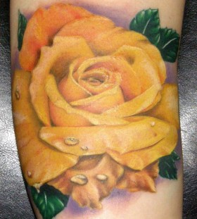 Lovely green leafs and yellow rose tatoo