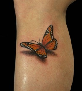 Pretty butterfly wing tattoo on leg