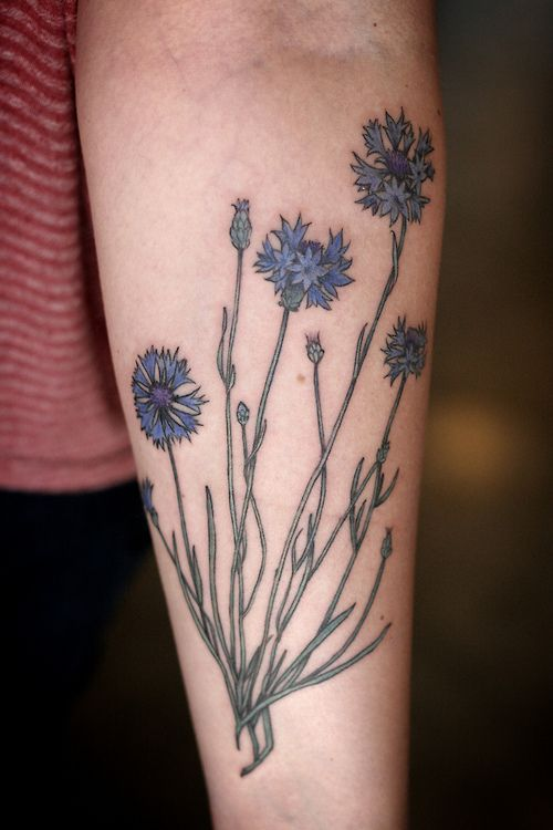 Lovely small cornflower tattoo