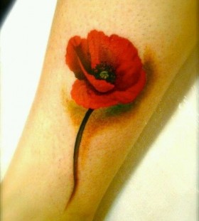 3D style poppies tattoo