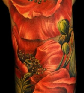 Adorable red poppies tattoo