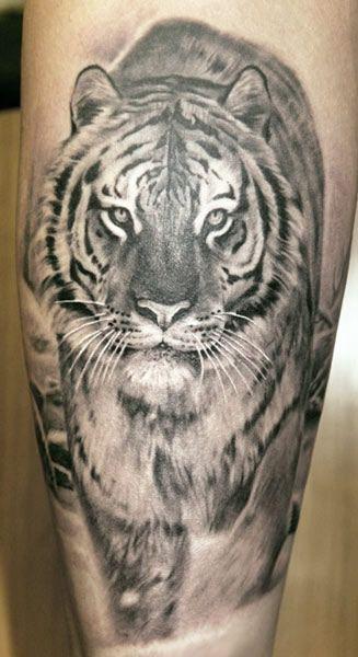 Angry lion animal tattoo