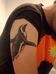 Awesome penguin tattoo on arm
