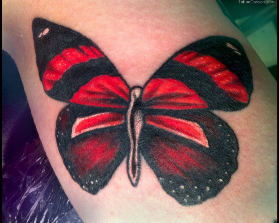 Black and lovely red butterfly tattoo