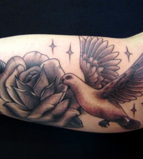 Dove and rose arm tattoo