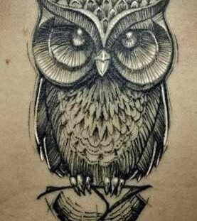 Gorgeous painted owl tattoo