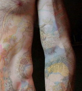 Lovely colors full body tattoo