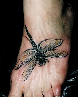 Realistic dragon-fly foot tattoo