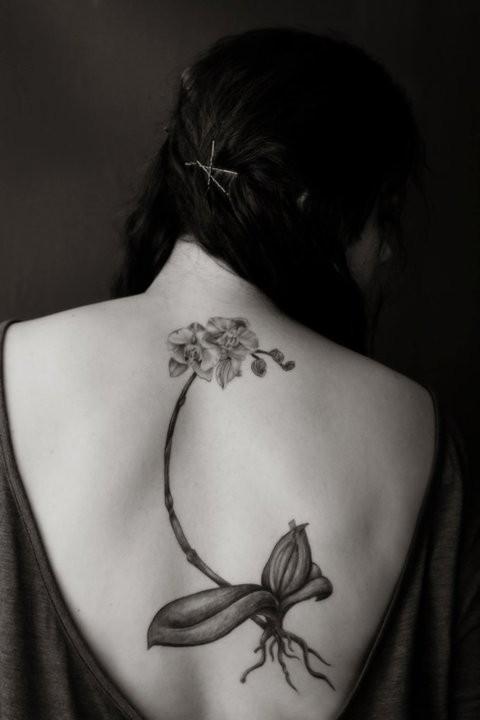Wonderful orchid back tattoo