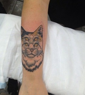 Weird cat tattoo by Dan Molloy