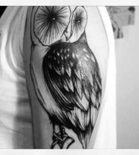Wonderful owl arm tattoo