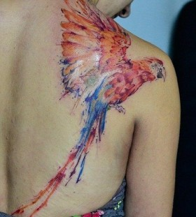 Wonderful parrot back tattoo