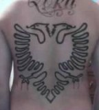 Original Albanian Eagle Tattoo