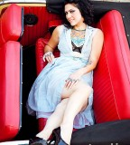 Tattoos of Danielle Colby American Picker Posing On Car