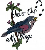 Never Clip My Wings Amy Winehouse Temporary Tattoo