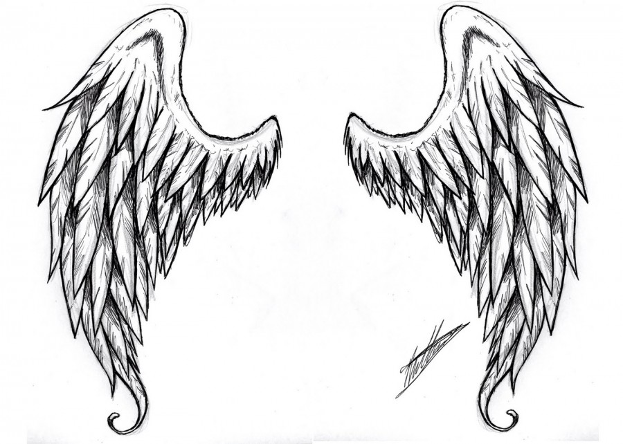 Angel Wing Tattoo Sketch Designs
