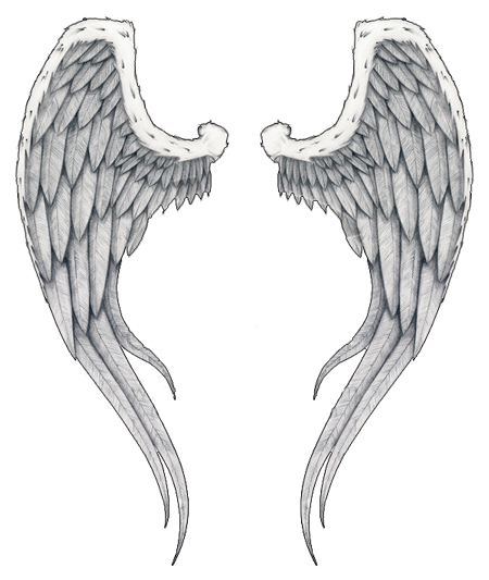 Unique Angel Wings Art Sketch
