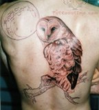 Moon And Owl Tattoo On Men Back