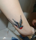Amazing Blue Head Red Body Canary Bird Tattoo on Wrist