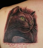 3D Black Cat Tattoos on Shoulder