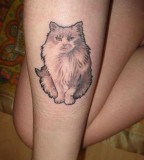 Hairy Cat Calf Tattoo for Girl