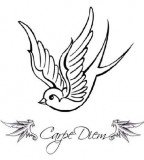 Carpe Diem Sparrow  Tattoo Picture At Checkoutmyink