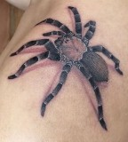 Black And Grey Spider Tattoo For Man