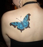Sweet Blue Butterfly Tattoo On Back For Girls