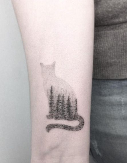 cat fade out
