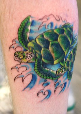 Choose Your Cool Turtle 3d Tattoo