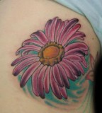 Lovely Pink-Purple Daisy Flower Shoulder Tattoo Design for Women