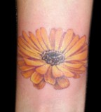 Lovely Feminine Orange Daisy Flower Tattoo Design - Flower Tattoos