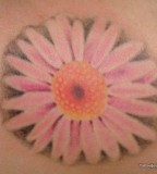 Feminine Pink Daisy Tattoo Design for Women - Flower Tattoos