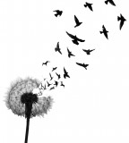 Dandelion And Birds Tattoo Design