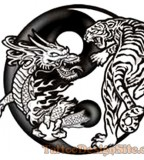 Beautiful Yin and Yang Dragon Tiger Tattoo