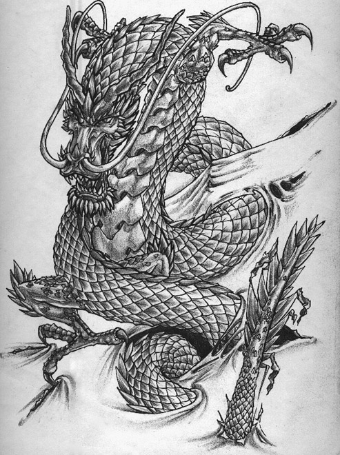Chinese Dragon Sketch Sample for Tattoo