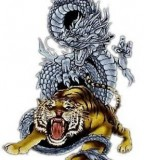 Martial Art  White Tiger Dragon Tatoo